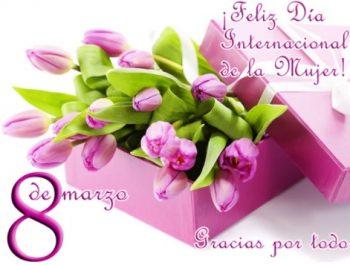 Feliz Día Internacional De La Mujer Luchadora