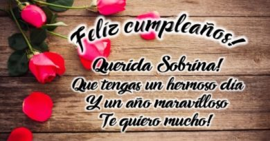 Frases De Feliz cumpleaños Para Una Sobrina Maravillosa