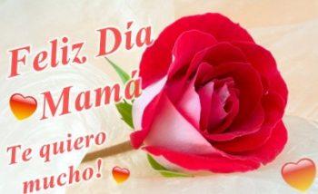 Día de la Madre Comprensiva