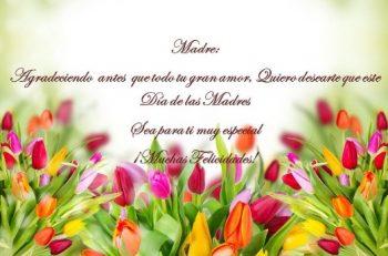 Día de las Madres Apasionadas