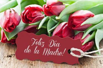 Día de las Madres Atrevidas