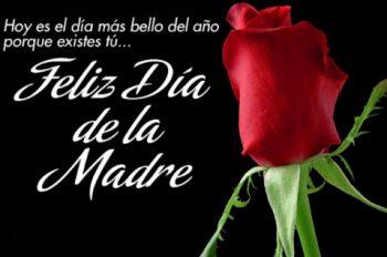 Dia de las Madres Trabajadoras