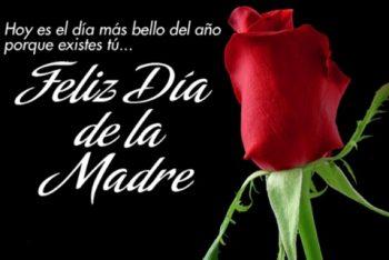 Feliz Día de la Madre Comprensiva