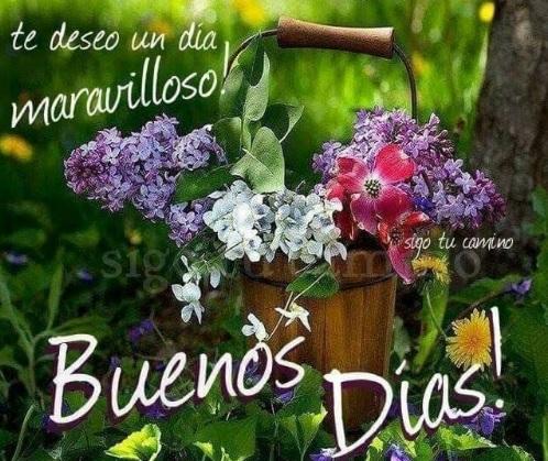 Te deseo un día maravilloso