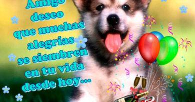 feliz cumpleaños amigo estudioso