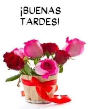 Imágenes De Buenas Tardes...