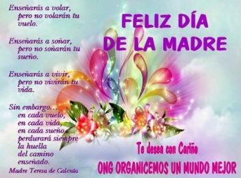 Día de la Madre Ejemplar