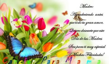 Día de las Madres Comprensivas