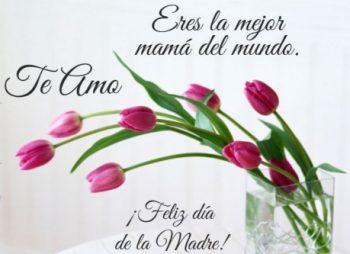 Día de las Madres Inteligentes