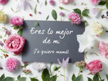 Feliz Día de la Madre Ejemplar