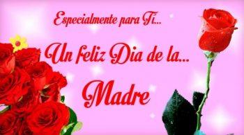 Feliz Día de la Madre Luchadora