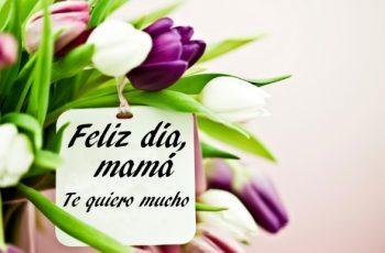 Feliz Día de la Madre Trabajadora
